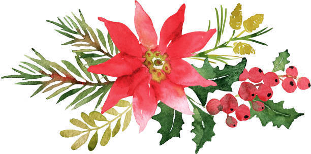 FFA Poinsettia Sales